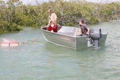 Sea Jay Nomad 4.4 Image 5