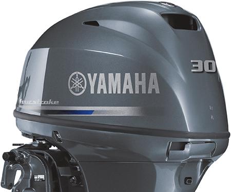 Yamaha F30 Motor Image 6