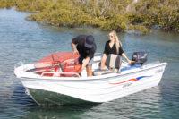 Sea Jay Swift Image 3