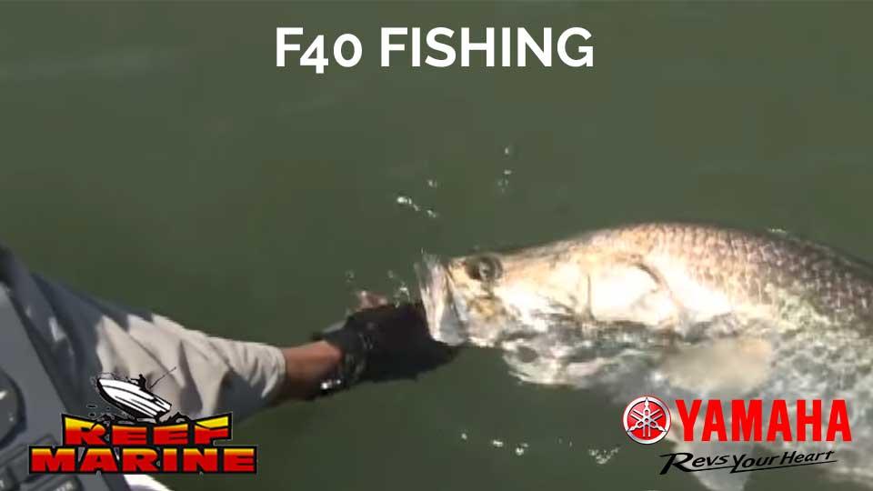 Yamaha F40 Fishing Video