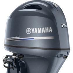 Yamaha F75 Half