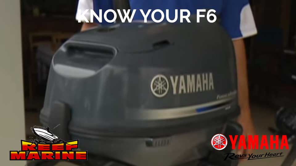 Get To Know Your Yamaha F6