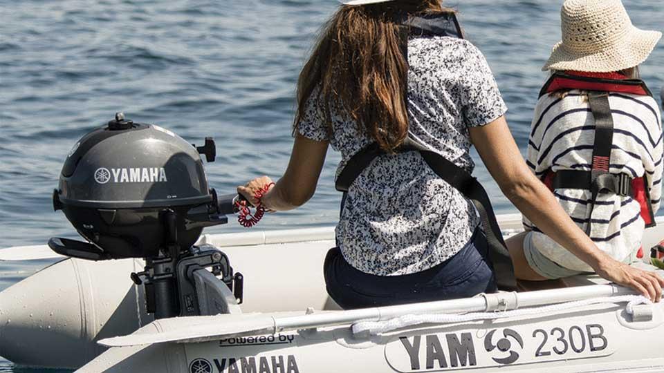 Yamaha F2.5 Image 2