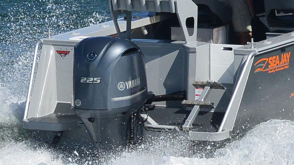 Yamaha F225 Image 4