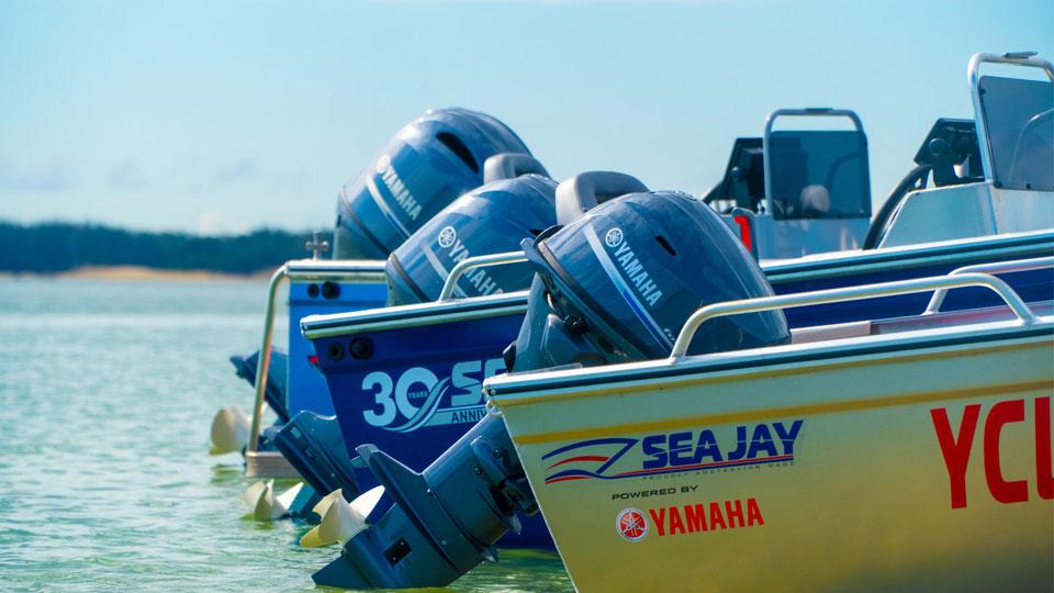 Yamaha F25 Image 1
