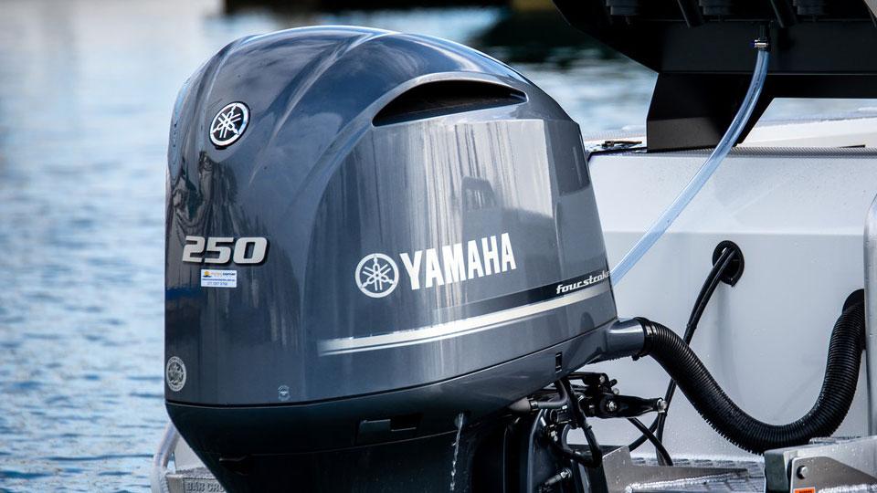 Yamaha F20 Image 1