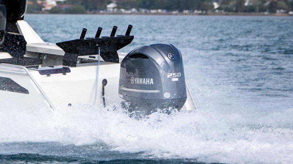 Yamaha F20 Image 2