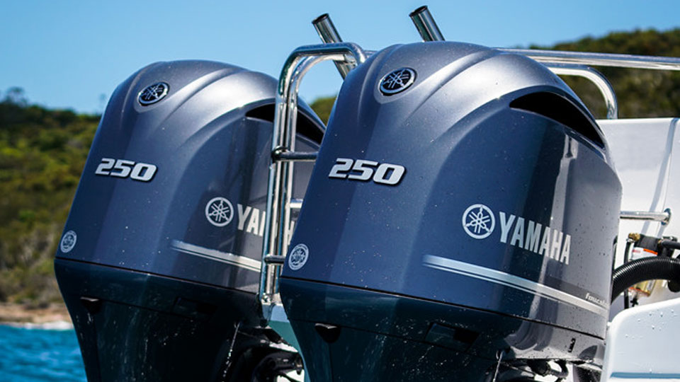 Yamaha F20 Image 4