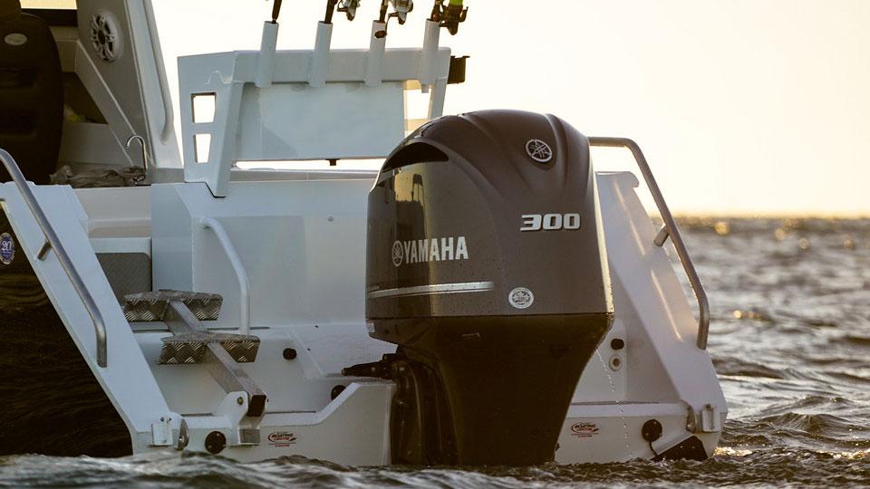 Yamaha F300 Image 4